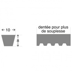 Courroie 10303C . 9.5 x  770  LA