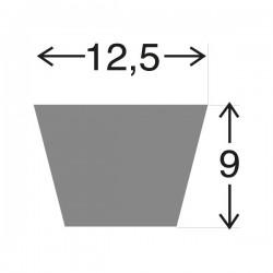 Courroie 17258C . 12.5 x  655 LA