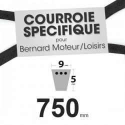 Courroie Spécifique Bernard Moteur 408018. 9 mm x 750 mm.