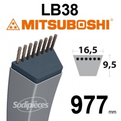 Courroie LB38 Mitsuboshi. 16,5 mm x 977 mm.