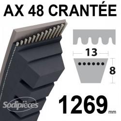 Courroie AX48 Trapézoïdale crantée. 13 mm x 1269 mm.