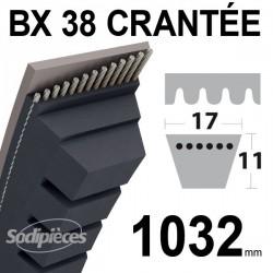 Courroie BX38 Trapézoïdale crantée. 17 mm x 1032 mm.