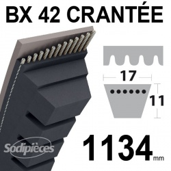 Courroie BX42 Trapézoïdale crantée. 17 mm x 1134 mm.
