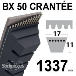 Courroie BX50 Trapézoïdale crantée. 17 mm x 1337 mm.