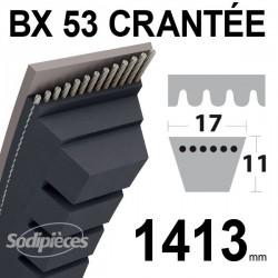 Courroie BX53 Trapézoïdale crantée. 17 mm x 1413 mm.