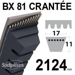 Courroie BX81 Trapézoïdale crantée. 17 mm x 2124 mm.