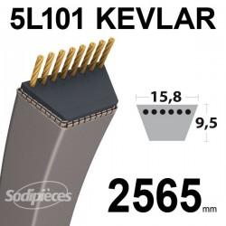 Courroie 5L101 Kevlar Trapézoïdale. 15,8 mm x 2565 mm.