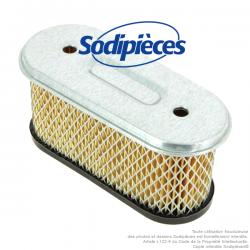 Filtre à air pour B&S 491021