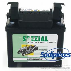 Batterie pour CASTEL GARDEN 18120000, 18120000/0