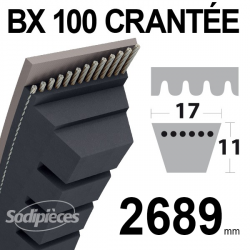 Courroie BX100 Trapézoïdale crantée. 17 mm x 2689 mm.