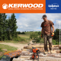 """Guide+chaine tronçonneuse Kerwood. 35cm, 3/8""""LP 1,3 mm"""