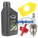 Filtre + préfiltre + bougie RocwooD + huile