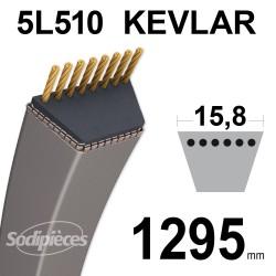 Courroie tondeuse 5L51 Kevlar Trapézoïdale. 15,8 mm x 1295 mm.