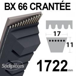 Courroie BX66 Trapézoïdale Crantée. 17 mm x 1743 mm.