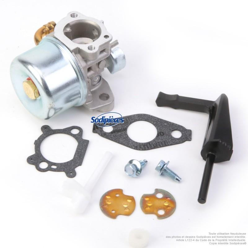 Carburateur pour Briggs & Stratton N°798653
