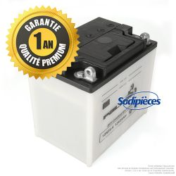 Batterie sèche Premium Palma 12N24-4