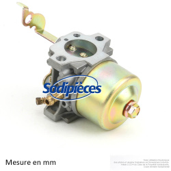 Carburateur pour ROBIN EY15, EY20. Remplace : 226-62460-00
